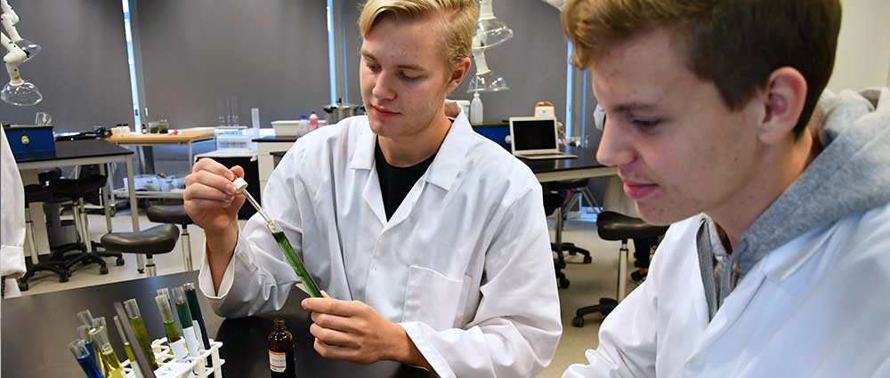 HTX – studieretningen Biotek og matematik